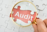 auditing developments